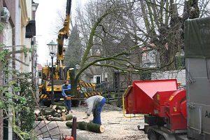 Bomen kappen Giessenburg